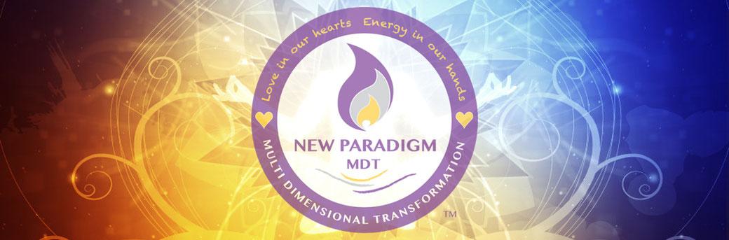 New Paradigm MDT 13D